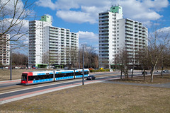 Darauf einen Tenever (trainspotter64) Tags: strasenbahn streetcar stadtbahn tram tramway tranvia tramvaj tramwaje bremen hansestadt bsag bombardier flexity gt8n1