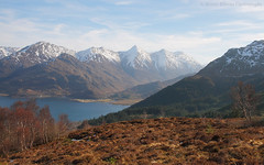 5 Sisters of Kintail (Jonny Hirons) Tags: kintail sisters fivesistersofkintail mamratagan lochduich mountains snow snowcappedmountains