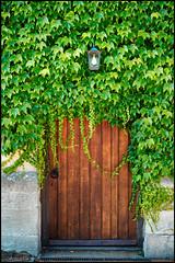 Thornbury Castle (Mark Greening) Tags: lamp thornbury thornburycastle building light plants door