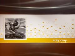 Cray Cray (Joe Shlabotnik) Tags: 2018 august2018 galaxys9 presqueisle hamptoninn hotel maine aroostook crayfish cameraphone cray
