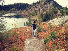 Autumn ..... (Mr. Happy Face - Peace :)) Tags: rockies rockymountains trails sky hike cans2s alpines mountainair banffpark nationalpark canada art2018 patriciabechthold quotes wtbw workingtowardsabetterworld alberta september wilderness forest mountains wildflowers hiking naturelovers sunshinemeadows albertabound larchforest yyc banff nature hikes autumn fall outdoors goodness love faithscenerylandscapeseasonshikingpoles
