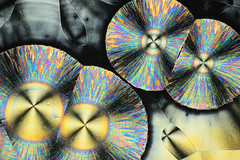 Colorful micro crystals in polarized light (alexey_marchenko) Tags: abstract chemical chemistry colorful crystal crystalline form harmony illuminated laboratory light macro micro microcrystal microphoto microphotography microscope microscopy pattern physics polarization polarizedlight science structure surface texture