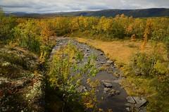 Høstlandskap (KvikneFoto) Tags: tamron nikon høst autumn fall natur landskap norge hedmark kvikne