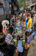 "Calcutta (toshu2011) Tags: india indien hindu hinduism gandhi hindi kolkata calcutta kalkutta west bengal bengali bengalen port city ganges hooghly river ganga megacity ""city joy"" cultural ""east company"" colonial era architecture"