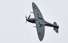 Spitfire (Bernie Condon) Tags: mh434 goodwood goodwoodrevival vintage preserved british uk greatbritain sussex vickers supermarine spitfire warplane fighter raf royalairforce fightercommand ww2 battleofbritian military aircraft plane flying aviation