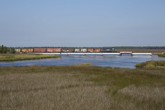 Crossing the Marshland (The Industrial Railfan) Tags: elchlok theindustrialrailfan henrydell railway railroad train csxtransportation sd402
