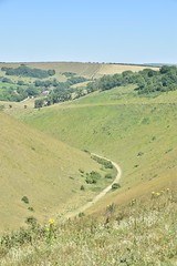 Devil's Dyke (PLawston) Tags: uk britain england west sussex south downs national park midsussex link border path devils dyke dry valley