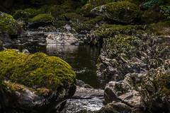Rocks and river (G. Warrink) Tags: wales visitwales cymru findyourepic lovewales beautifulwales discoverwales river stream water rocks fairyglengorge brook ffosanoddun