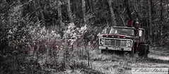 Old Ford (Tonya Salas) Tags: tennessee grundycounty red servicetrucks vehicles vintage ford