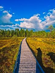 P1230271 (Tuomas Posio) Tags: panasonic gx80 kätkävaara landscape lapland finland