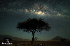 Natron Stars (www.jamesbrew.com) (James Brew (www.jamesbrew.com)) Tags: tanzania eastafrica africa lakenatron natron lake travel travelphotography landscape landscapephotography astrophotography milkyway stars night nightsky