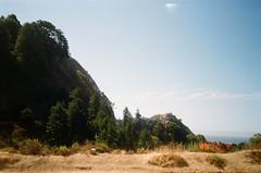 Partington Cove Trial (dqlam) Tags: film forest cliff california coast cove coastline ocean rock landscape seascape partingtoncove kodakfilm kodakgold kodak hiking sky park tree nature outdoor photography highway1 analogphotography bigsur