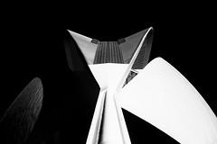 Palau de les Arts Reina Sofía (Maerten Prins) Tags: spain spanje valencia calatrava santiagocalatrava architect architecture modern cityofartsandsciences palaudelesartsreinasofía concrete curve curves shape abstract mozaic sky building black white blackandwhite contrast symmetry symmetrical geometry geometric