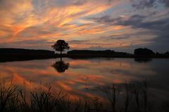 IMG_4432 (geraldtourniaire) Tags: natur nature eos6d ef landschaft l sonnenaufgang mittelfranken franken 24105l 6d