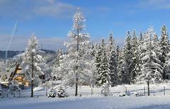 Zakopane-November'17 (143) (Silvia Inacio) Tags: zakopane polska poland polónia snow winter inverno neve house casa tree árvore mountain montanha nuvens clouds