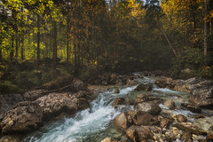 Zauberwald (der_peste (on/off)) Tags: forest water creek river long zauberwald magicforest hintersee berchtesgadenerland ramsau rocks flow fall autumn colors landscape nature