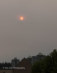 Wildfire Smoke and Haze in Metro Vancouver and Fraser Valley, 18 Aug 2018 (PhotoDG) Tags: smog haze sun smoke smoky sky wildfire vancouver metrovancouver fraservalley lowermainland environment climate weather air airquality pollution ef70200mmf4lisusm color