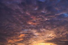 Lovely Sky (TheBundit) Tags: sky color sunset cloud