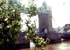 towbridge91 (Regine G.) Tags: thetowerbridge london england bridge thames tree sunny outdoor