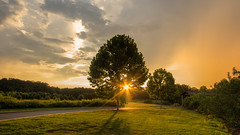 Last warm rays of the day - 2018-08-29_02 (Paul and Nalva) Tags: nx500 samsungnx500 rokinon12mmf2
