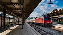Spiez 08 July 2018 (124) (BaggieWeave) Tags: switzerland berneseoberland cantonbern spiez sbb re460