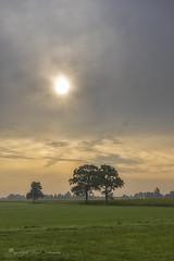 Cloudy (Ruud.) Tags: ruudschreuder fe 2870mm f3556 oss sony7m2 sony sony7 alfa alpha alpha7 sonyalfa sonyalpha ilce7m2 sonyalphadslr noordbrabant brabant roosendaal haiink brabantslandschap northbrabant netherlands landschap landscape paysage nederland holland niederlanden paybas holanda hollandslandschap dutchlandscape