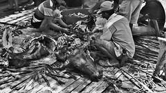 """INDONESIEN, Sulawesi - Traditionelle Totenfeier der Toraja bei Makale, 17641/10652 (roba66) Tags: sulawesi urlaub reisen travel explore voyages rundreise visit tourism roba66 asien asia indonesien indonesia insel celebes island île insulaire isla toraja tanahtoraja volk brauchtum tradition «torayavillage» ahnenkult mythen beerdigungsriten riten beerdigung bestattung funeral puya zeremonieplatz totenfeier opfer wasserbüffel schweine pigs buffalo feier monochrome blackwhite bw blancoynegro swbw negro blackandwhite blancoenero byn bretoebranco einfarbig """"schwarzweis"""""""