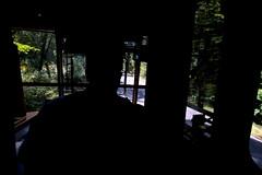 Tram driver in Sächsische Schweiz (davidvankeulen) Tags: europe europa deutschland duitsland sächsischeschweiz saxonyswitzerland saxony saksen sachsen nationaalpark nationalpark nationaalparksächsischeschweiz badschandau kirnitzschtalbahn landkreissächsischeschweizosterzgebirge sächsischeschweizosterzgebirge tram tramway strassenbahn strasenbahn tranvia lightrail stadtbahn metrolink semimetro bovenleiding catenary caténaire oberleitung køreledning davidvankeulen davidvankeulennl davidcvankeulen urbandc