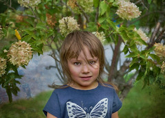Flyaway Hair (jta1950) Tags: kid child children enfant girl fille cute adorable portrait little young texture 3yearold person people
