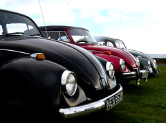 Bugs (johnwiseman0211) Tags: vw beetle bug vdub