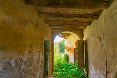 Peeking the old house entrance (silvia04.r) Tags: old house country abandoned casa abbandonata