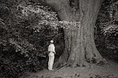 Avant que le ciel nous tombe sur la tête (Jean-Marie Lison) Tags: eos80d sigmaart bruxelles forest parcjacquesbrel arbre tronc chênejoséphine noiretblanc nb monochrome