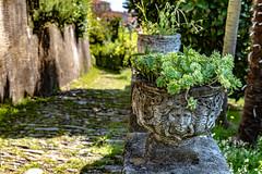 Lago Maggiore 2018 - Cannero Riviera (karlheinz klingbeil) Tags: sculpture italien italy italia stone skulptur lagomaggiore stein canneroriviera provinzverbanocusioossola it