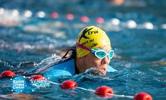 RJ8-8-STFC-89306 (HaarlemSwimtoFightCancer) Tags: joostreinse actie clinicreigers houtvaart sport sro swimtofightcancer training zwemmen