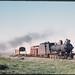 Hawker line - South Australia loco SAR T44 on freight - NCS463 cattle van - X class open wagon + Brake CR NYAB15 (mb-s001-20)