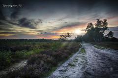 Cartier (Geert E) Tags: heide moor landscape landschap sunset hdr
