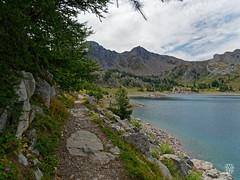 2018-09-16_9161715 © Sylvain Collet_DxO.jpg (sylvain.collet) Tags: mountains alpesdehauteprovence france wild montagne colmarslesalpes lacdallos nature