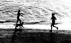 Running in Tel-Aviv beach - Follow me on Instagram:  @lior_leibler22 (Lior. L) Tags: runningintelavivbeach running telaviv beach runner dog blackandwhite monochrome shadows silhouettes beaches telavivbeach israel