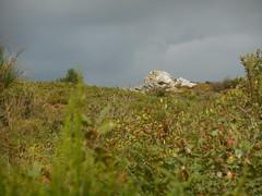 DSCN5708 (norwin_galdiar) Tags: bretagne brittany breizh finistere monts darrée nature landscape paysage