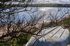 high and dry (scottprice16) Tags: england northumbria 2018 march spring sunshine water glisten reflection tree boat highanddry upturned alnmouth riveraln estuary afternoon light colour fuji xtrans fujixt1 18135mm outdoors walking forlorn branches fields