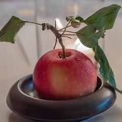 ein Apfel / an Apple (p.schmal) Tags: olympuspenf olympus60mmf28makro apfel