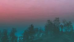 A Witcher's Journey | The Witcher 3 (CHRISinSESSION) Tags: 4k games game screenshots screenshot gamescreenshots gamescreens digital art realism beautiful virtualphotography videogames screencapture societyofvirtualphotographers a witchers journey | the witcher 3