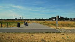 Ruhrgebiet (bLiCk-WiNkL) Tags: ruhrgebiet rhein deutschland nrw germany woman dog gras rhine sky blue industrie radweg duisburg