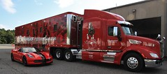 The Clydesdales are in Town! (yelovet00) Tags: corvette clydesdale horse peterbuilt truck budweiserclydesdales