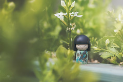 as luck would have it (rockinmonique) Tags: kimmidoll toy small tiny japanese fence railing leaves plant green light macro bokeh moniquewphotography canon canont6s tamron tamron45mm copyright2018moniquewphotography yoshiko means yoshikomeansgoodluck