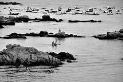 Summer time (jaume zamorano) Tags: blackandwhite blancoynegro blackwhite blackandwhitephotography blackandwhitephoto bw catalunya costabrava calelladepalafrugell d5500 monochrome monocromo nikon noiretblanc nikonistas pov platja playa beach summer