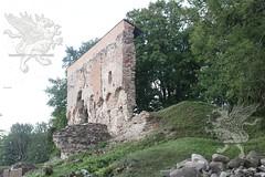 Tallinn_Riga 2018_trasferimento_06