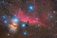 IC434 - Horsehead Nebula (ZeSly) Tags: nebula orion flame alnitak astronomy sky stars deepsky astrometrydotnet:id=nova2773056 astrometrydotnet:status=solved