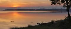 Septembre sur le lac... / September sunrise on the lake... (Pentax_clic) Tags: ac • deuxmontagnes kr 2018 septembre pentax oies lever panorama sunrise soleil robertwarren imgp904248