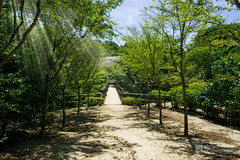 Full view of Shishoji Zen Museum And Gardens, Kotei (新勝寺 禅と庭のミュージアム 洸庭) (christinayan01 (busy)) Tags: zen japan hiroshima buddhism museum architecture temple